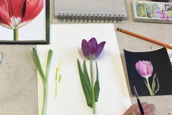 Botanical-art-class